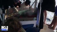 Alexander Kondrashov Все видео Панамские будни #10. Вторые сутки в море. Самодельный флаг. Укрытие от солнца.