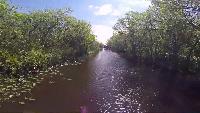 Alexander Kondrashov Все видео Русские в Америке #8 - национальный парк Эверглейдс.