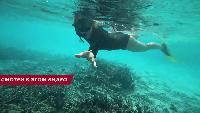 Alexander Kondrashov Все видео Выживаем на Мальдивах. Добываем Огонь. Корм для Акул