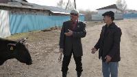 Бастык боламын Сезон-1 Серия 4 (на казахском языке)