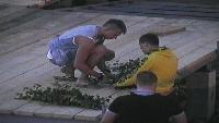 ДОМ-2. После заката Сезон 90 Ночной эфир 2973 дня