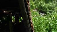 KREOSAN Все видео САМОДЕЛЬНАЯ Гидро Электро Станция Бесплатное электричество. Автономная свободная энергия