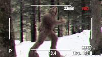 LOL Ржунимагу Эпизоды Игра на камеру