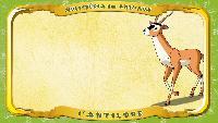Мультипедия животных Французский алфавит Французский алфавит - La lettre A - l'Antilope
