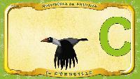 Мультипедия животных Французский алфавит Французский алфавит - La lettre C - la Corneille