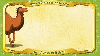 Мультипедия животных Французский алфавит Французский алфавит - La lettre C - le Chameau