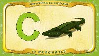 Мультипедия животных Французский алфавит Французский алфавит - La lettre C - le Crocodile