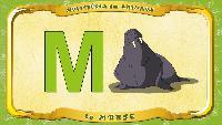 Мультипедия животных Французский алфавит Французский алфавит - La lettre M - le Morse