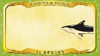 Мультипедия животных Французский алфавит Французский алфавит - La lettre R - la Requin