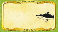 Мультипедия животных Русский алфавит Русский алфавит - Серия 2 - Буква А - Акула