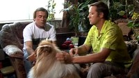 Собака в доме 1 сезон 21 выпуск